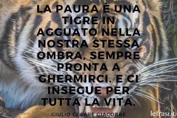 Frasi sulla tigre - La paura è una tigre in agguato nella nostra stessa ombra, sempre pronta a ghermirci. E ci insegue per tutta la vita.