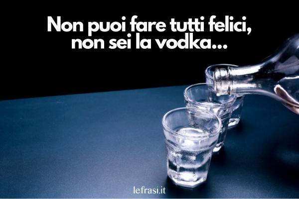Frasi sul bere - Non puoi fare tutti felici, non sei la vodka...