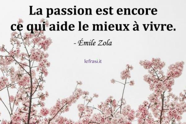 Frasi d'amore in francese - La passion est encore ce qui aide le mieux à vivre.
