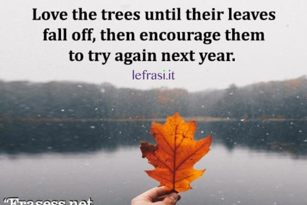 Frasi sull'autunno - Love the trees until their leaves fall off, then encourage them to try again next year.